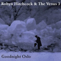 Robynhitchcock_goodnightoslo204 (1)